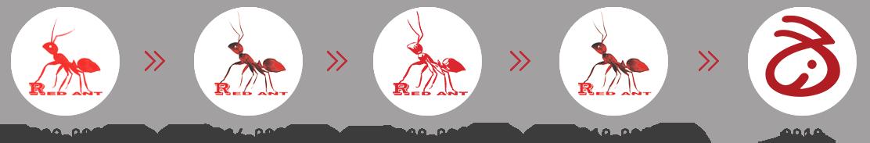 红蚂蚁logo演变史
